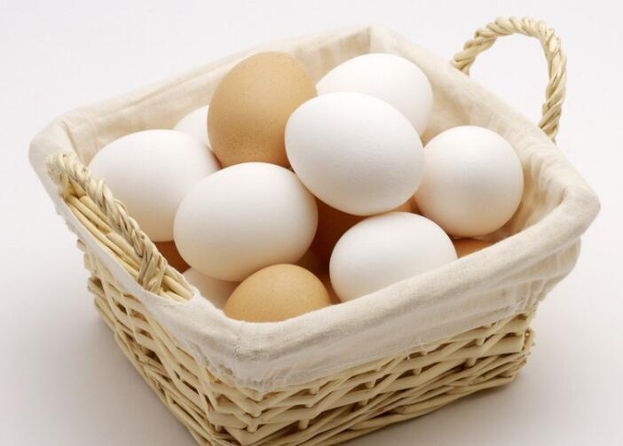 柴犬可以吃雞蛋嗎 吃瞭有好處但不能喂食太多!