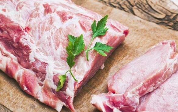 柴犬可以吃豬肉嗎 註意不能給它喂食生的!