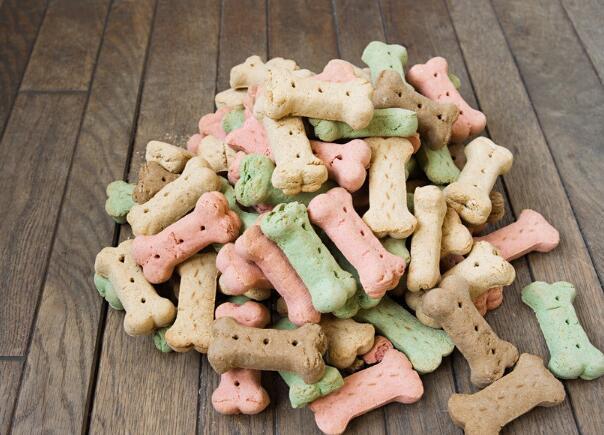柴犬多大可以吃幹狗糧 註意不要太早給它吃