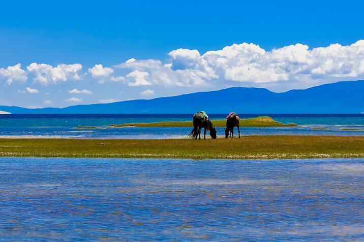 青海湖穿什么拍照漂亮