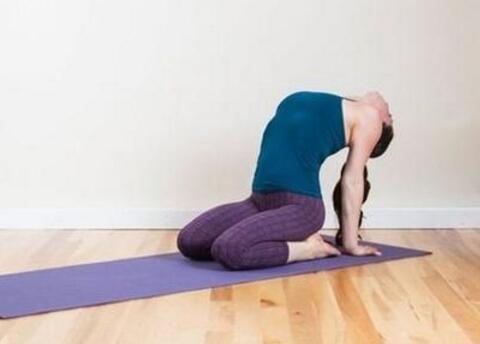 减肚子的瑜伽动作视频图片