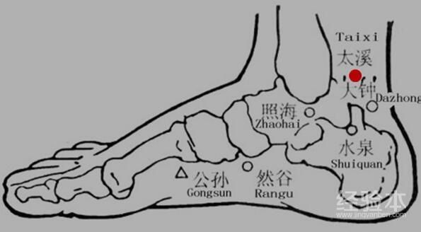 太溪穴道位置图_太溪的准确位置图,太溪穴在哪里-健康经验本