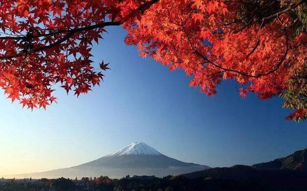 11月去日本旅游怎么样