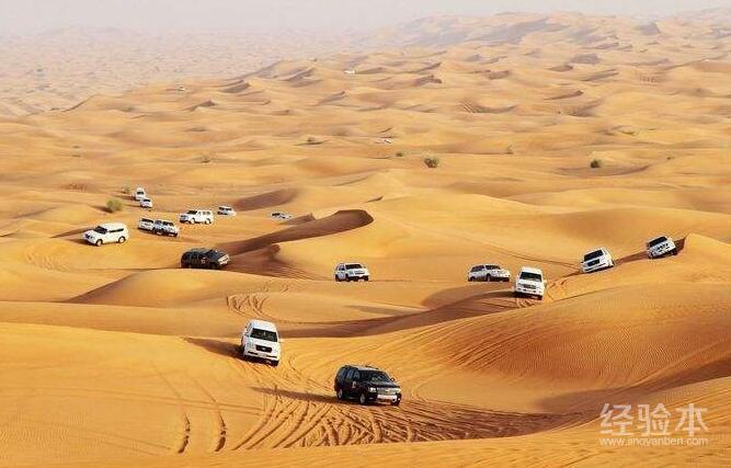 11月去迪拜旅游有什么好玩的