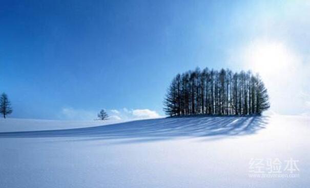 冬天去北海道穿什么鞋